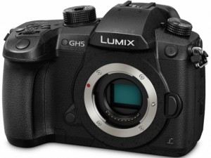 PANASONIC LUMIX GH5 vlogging camera