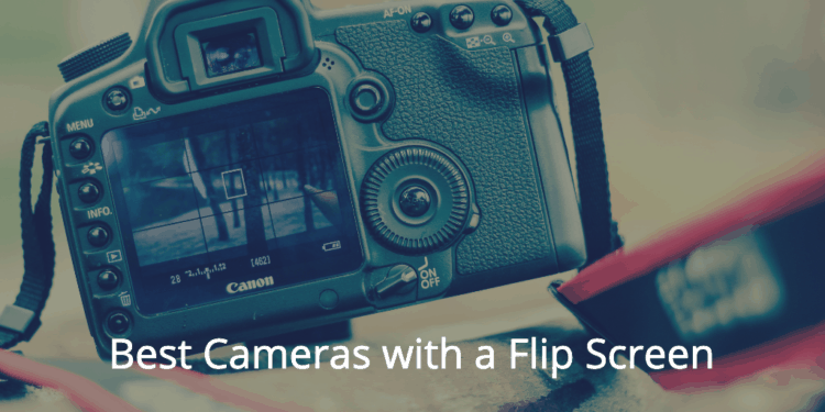 Best Cameras with a Flip Screen